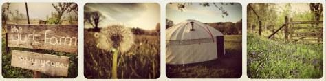 Yurt Farm1a